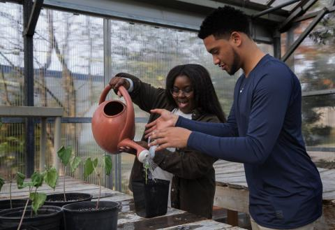 "Chalisa Thompson and Chase Williams water a bean plant during a class that merges environmental science with sociology at Highline College in Des Moines on Tuesday. ""Umoja is really there to show you that... (Ellen M. Banner / The Seattle Times)"